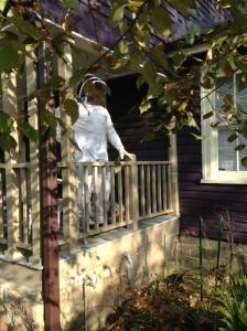 """""""beekeeping suit"""""""