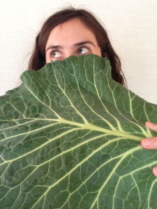 """giant collard green leaf"""